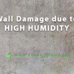 high-humidity-problem
