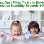how-to-reduce-humidity-and-fungus-at-home-or-office