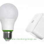 home-lighting-control-system-system-provider-in-dubai-uae